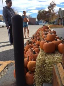 people-and-pumpkins-img_0803