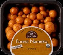 Forest-Nam-Wht