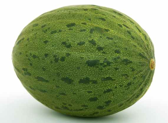 green oval fruit