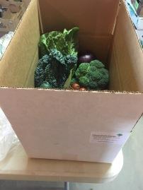 Sample Box with Box