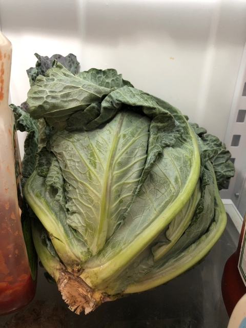 cabbage in the rough